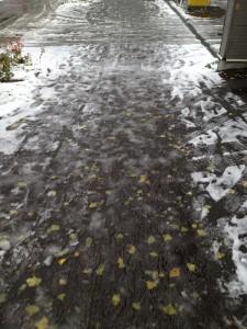 札幌の雪道