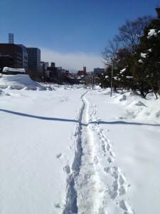 大通公園の雪道